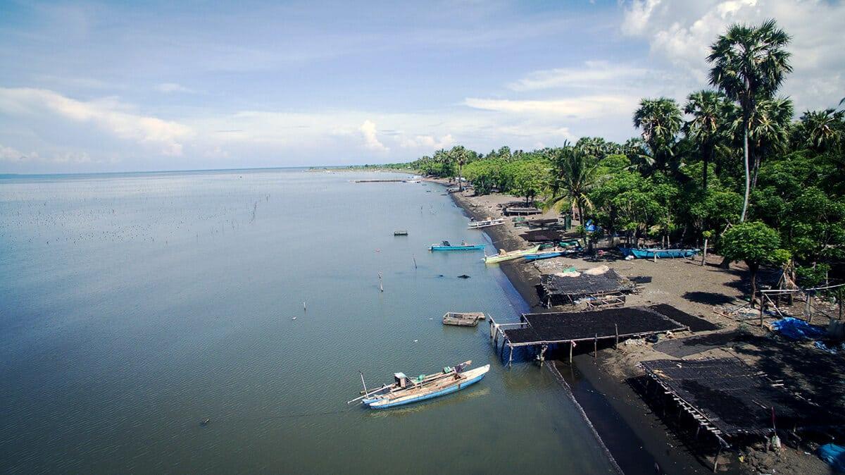 Indonesia Hydrocolloid|Association of Indonesia seaweed